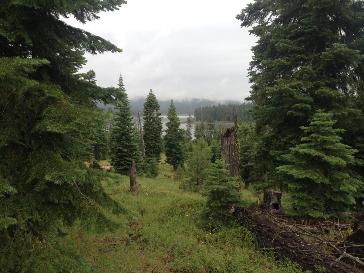 1740 On a Grey Day, the TrailProvides